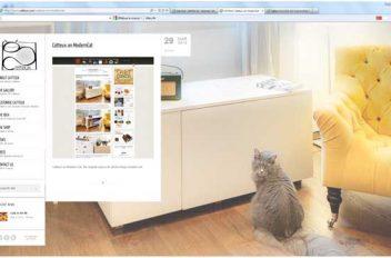 Catteux e-shop di prodotto